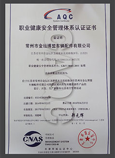 ISO 18001 Chinese